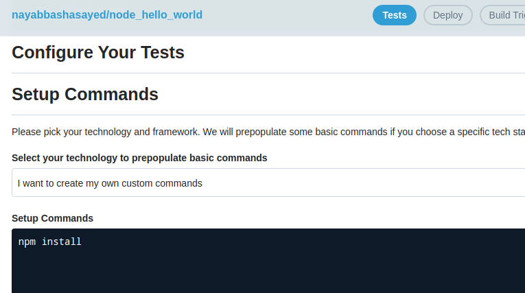 Codeship tests setup commands